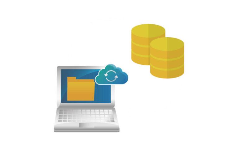 web design hosting